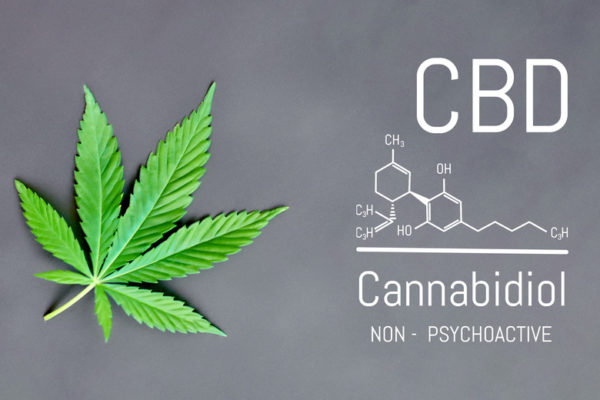 CBD Cannabis Formula. Structural model of cannabidiol and tetrahydrocannabinol molecule. Medicinal hemp CBD oil. Medical marijuana, despancery business, cannabinoids and health